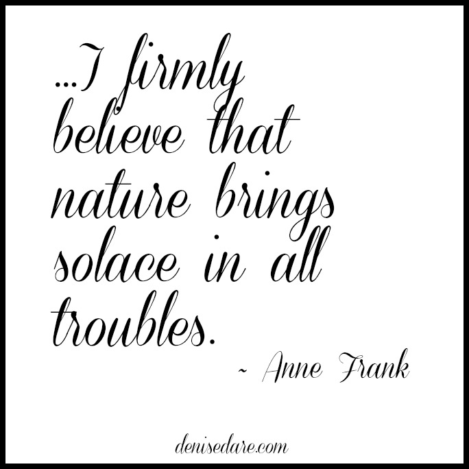 Nature brings solace in all troubles by Anne Frank